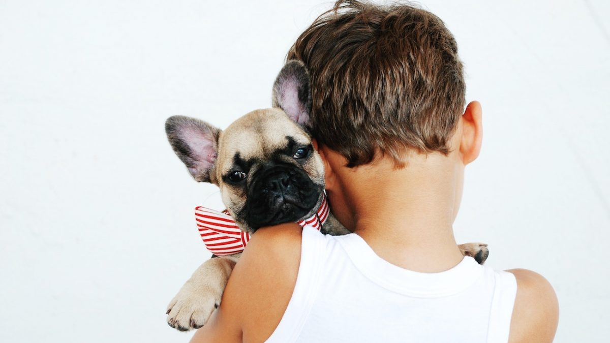 What to Say when Your Child Wants a Pet: Yes or No?